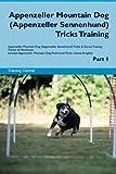 Appenzeller Mountain Dog (Appenzeller Sennenhund) Tricks Training Appenzeller Mountain Dog Tricks & Games Training Track