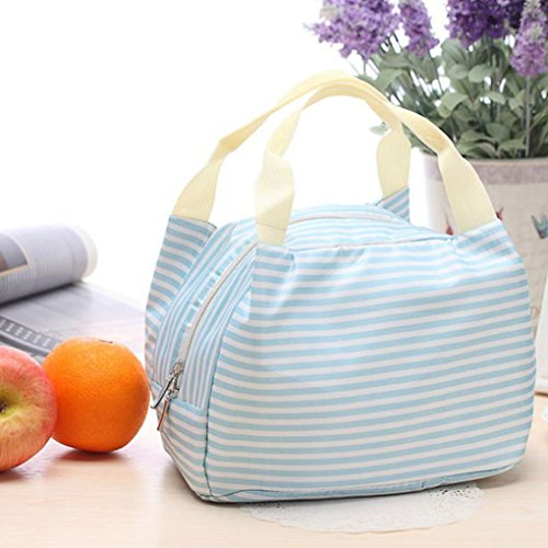 Zolimx Tragbare Lunch Bag Tote Picknick Isolierte Kühler Reißverschluss Veranstalter Brotdose (Blau) (Tasche Brieftasche Vera Bradley)