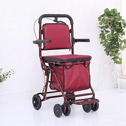 MEYLEE Chaise roulante portable à grande roue pliante, le panier d'achat pour personnes âgées avec panier