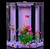 YANFEI 20L Desktop Mini Nueva Alimentación Artificial Interna FilterLED Acuario De Iluminación De Escritorio De Acrilico Fish Tank