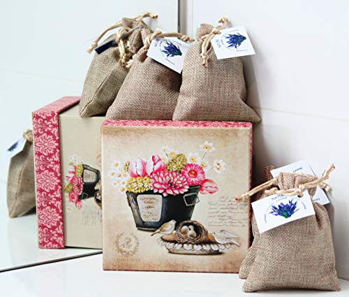Direct Global Potpourri Lavendelsäckchen 4 x 20 Gramm, Lavendelbeutel + dekorative Box Vogelnest, Zum Entspannen und Dekorieren des Hauses, Lavendelblüten (4)