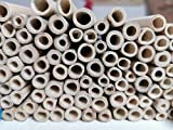 aktiongruen Bambusröhrchen Wildbienenhotel Insektenhotel Bastelsachen (80 Stück) 12cm