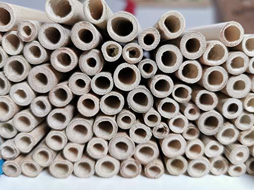 aktiongruen Bambusröhrchen Wildbienenhotel Insektenhotel Bastelsachen (80 Stück)