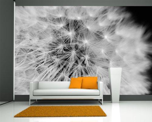 Bilderdepot24 Vlies Fototapete - Pusteblume - schwarz Weiss - 270x180 cm - mit Kleister - Poster - Foto auf Tapete - Wandbild - Wandtapete - Vliestapete (Schwarz Und Weiß-unkraut-poster)