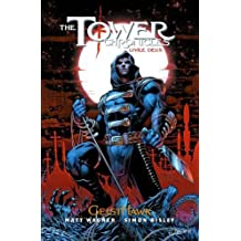 The Tower Chronicles, Tome 2 : GeistHawk : Tome 2