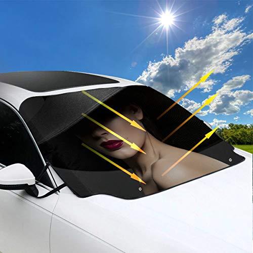 Die Katze Im Hut Filme - Windschutzscheibe Sonnenschirme für Autos schöne Frau