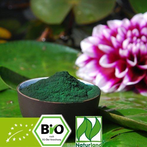 Bio Chlorella pyrenoidosa - reines Pulver - Naturland zert. 250g -