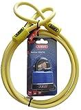 Abus Cobra 10/200 Kabelschloss Set mit Abus Aqua Safe 70IB/50 Marine/Rostfrei Vorhangschloss inkl. 2 Schlüssel