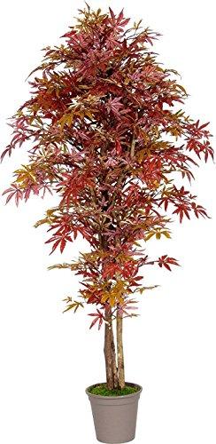 Acero Rosso - Albero Artificiale Da Arredo Interno Con Tronco Vero - Alto 100 cm