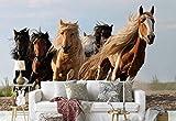 Vlies Fototapete Fotomural - Wandbild - Tapete - Pferd Herde Galoppierende - Thema Tiere - L - 254cm x 184cm (BxH) - 2 Teilig - Gedrückt auf 130gsm Vlies - 1X-1276656V4