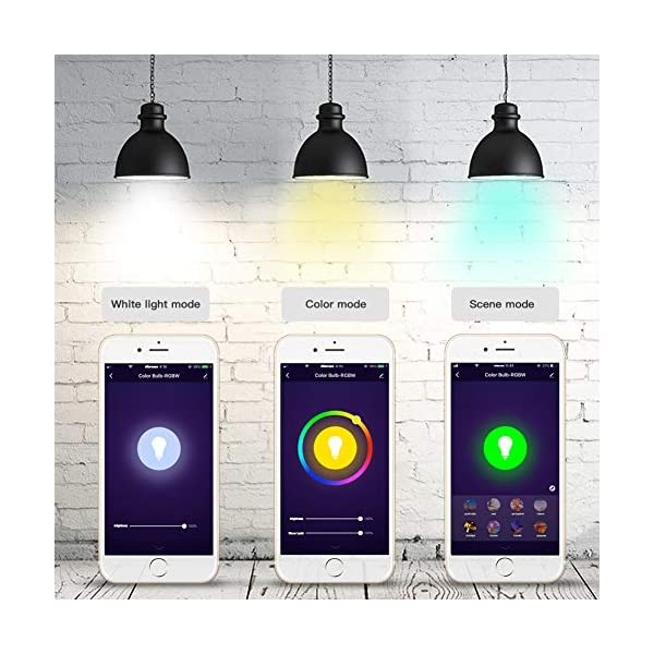 Woox-Smart-Light-Bulb-funziona-con-Alexa-Classe-di-efficienza-energetica-A