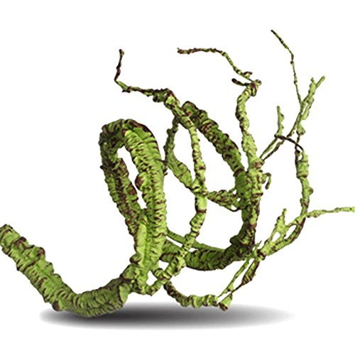 Etbotu Flexibler biegsamer künstlicher Baum Rebe Dschungel Reben Haustier Lebensraum Dekor für Eidechsen Frosch Schlangen und mehr Reptilien
