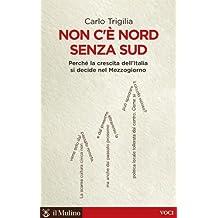 Non c'è Nord senza Sud: Perché la crescita dell'Italia si decide nel Mezzogiorno (Voci)