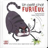 Un petit chat furieux par Audrey Bouquet