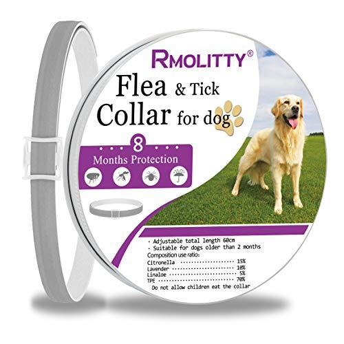 Rmolitty Zeckenhalsband für Hunde, Natürliches Extraktöl Anti Floh Zeckenhalsband 8 Monate Schutz für kleine mittelgroße Hunde