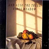 Songtexte von And Also the Trees - Virus Meadow