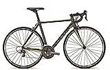 FOCUS CAYO AL TIAGRA Fitnessbike Rennrad Nimbusgrey matt/Acidgreen 60
