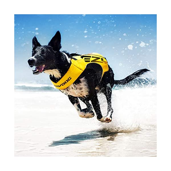 EzyDog X2 Boost Dog Lifejacket (Small, Pink) 2