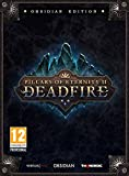 Pillars of Eternity II: Deadfire Obsidian Edition - PC [Edizione: Germania]
