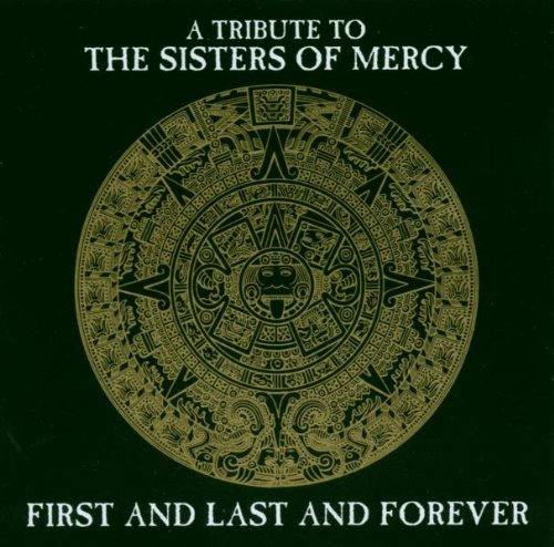 A Tribute to Sisters of Mercy
