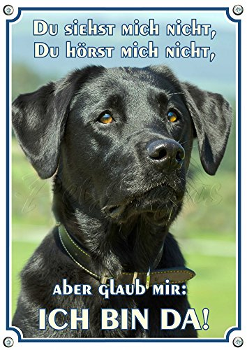 Hundeschild Labrador Retriever - Labbi Metallschild - uv beständig und rostfrei, 1. DIN A5