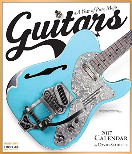 Guitars Wall Calendar 2017 por David Schiller