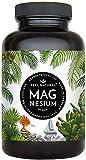 Magnesium Kapseln - 365 Stück