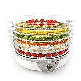 Meykey Déshydrateur Alimentaire 5 Plateaux, Déshydrateur Fruits et Légumes 500 W, Argent