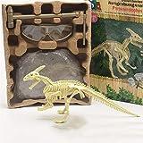 YYD Dig Out Dinosaurier Fossil Digging Kit Skelette Spielzeug Digging Bagger Kit...