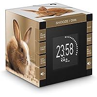 Bigben Interactive RR70PLAPIN Reloj Digital Negro, Marrón - Radio (Reloj, Digital, PLL, 87,5-108 MHz, LCD, Negro, Marrón)