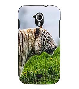 Fuson Designer Back Case Cover for Micromax Canvas HD A116 :: Micromax A116 Canvas HD (The tiger theme)