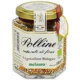 Delizioso Shop - Polline Naturale di Fiori da Agricoltura Biologica Italiana