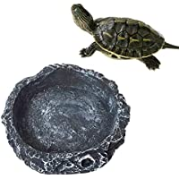 mackur Creative Reptile Bowl Feeding Wassernapf Dish für Haustier Schildkröte Gecko Schlange 1Größe 8* 8* 2cm (grau.)