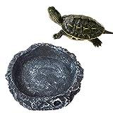 Mackur creative Reptile ciotola scodella cibo acqua Dish per tartaruga Gecko Snake 1PCS Dimensioni 8* 8* 2cm (grigio).