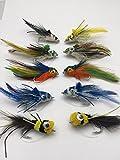 Angeln Bass Pike Fliegen Taucher Größe 2/0-3/0Zehn Salzwasser Bass Forelle Zander Chub gratis Geschenkbox Fly Fisch Pack # X