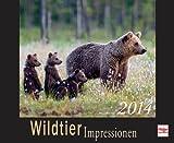 Wildtier Impressionen  2014 (Kalender)