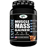 World Nutrition Explode Muscle Mass Gainer (Chocolate, 1 Kg)