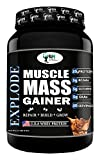 WN WORLD NUTRITION Explode Muscle Mass Gainer (Chocolate, 1 Kg)
