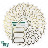 Ivy Lot de 225 étiquettes autocollantes pour pots de confiture et conserves 34 x 75mm