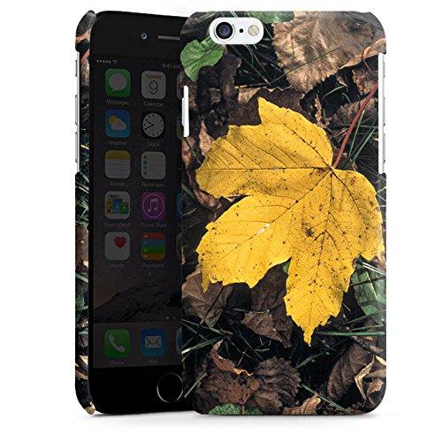 Apple iPhone 5 Housse étui coque protection Feuille d'érable Feuillage Automne Cas Premium brillant