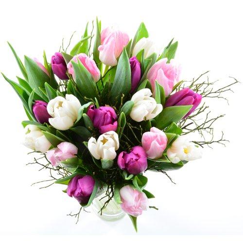 Frische Tulpen aus Holland sind die schönsten Frühlingsboten überhaupt. Diese Tulpen bekommen wir in schwerer, 1A Qualität, ganz frisch von der Blumenversteigerung in Holland geliefert. Aufgebunden mit frischem Heidelbeergrün bekommen sie einen wunde...