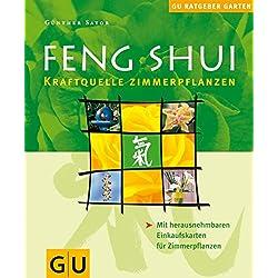 Feng Shui Zimmerpflanzen