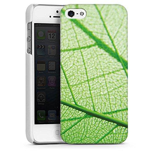 Apple iPhone 5s Housse Étui Protection Coque Feuille Plante Vert CasDur blanc