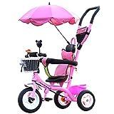 Kinder Fahrrad Faltwagen 1-6 Jahre alt, Kinderwagen, abnehmbare Hand Push Rod, Regenschirme, Pink ( Size : Titanium empty wheel )