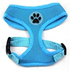 PUPTECK Soft Mesh Adjustable Pet Walking Harness for Dogs Blue Extra Large 2