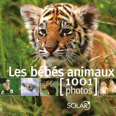BEBES ANIMAUX EN 1001 PHOTOS