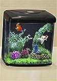 YANFEI Acuario Mini Acuario Minjiang Pequeño Acrílico Creativo Transparente LED Plástico Fish Tank Red , C
