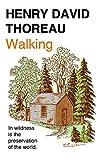 #6: Walking