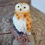 HINMAY Owl Species Barn - Statuetta di Gufi innevati e urlati su Ramo, C, Taglia Libera