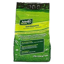 ACTIWIN GAZON VERDISSANT ANTIMOUSSE AVEC EFFET PACK DE 4 KG